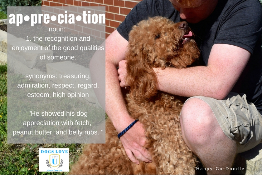 "Enjoying every moment shared with your dog...that's Dog Appreciation. ap-pre-cia-tion: noun. Example: He showed his dog appreciation with fetch, peanut butter, and belly runs."" college student hugging red goldendoodle dog"