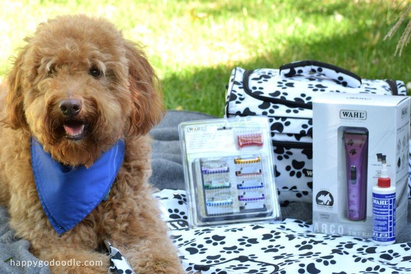 Wahl Pet Giveaway prize pack of dog hair trimmers and dog grooming bag and dog hair blades